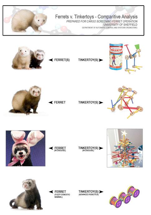 Roboferrets v. Tinkertoys